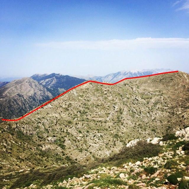 Mount_Oligyrtos_Chionotripa_Grimini_7861_02