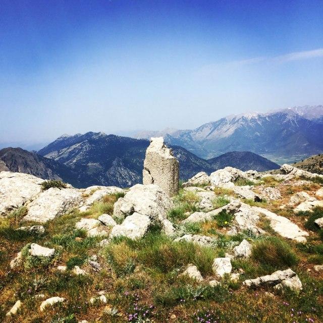 Mount_Oligyrtos_Chionotripa_Grimini_7866