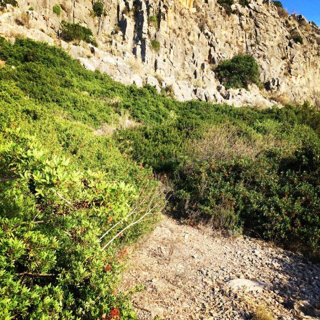 Climbing_Argolis_Fragchti_Caves_1443