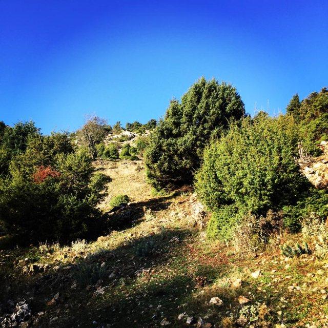 Aremisio_North_Face_Trad_Climbing_1771