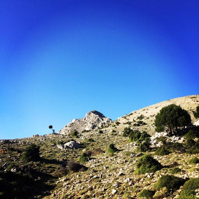 Aremisio_North_Face_Trad_Climbing_1774