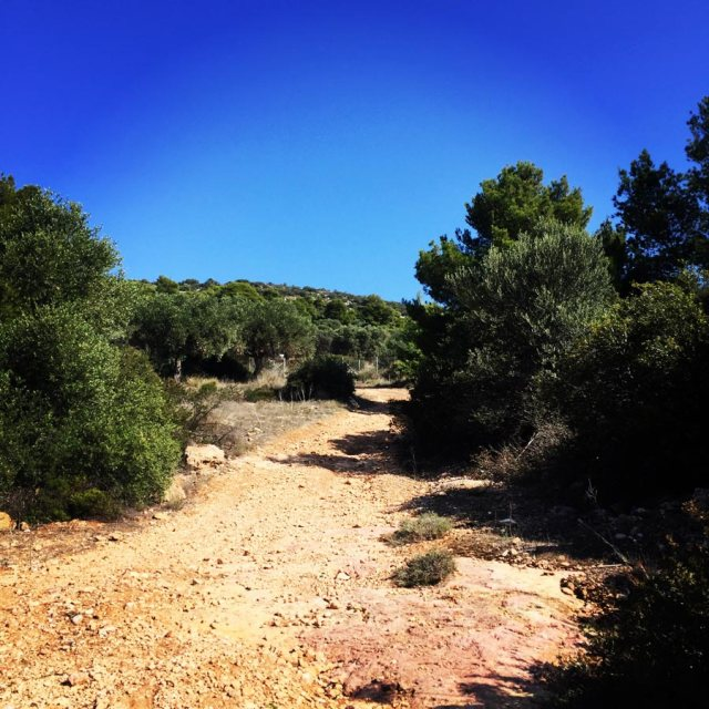 Climbing_Etos_Spata_Athens_Airport_2517