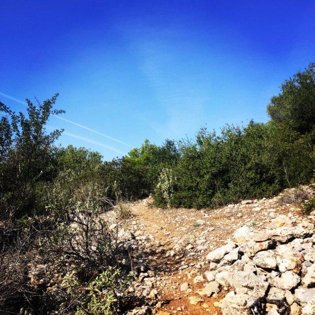 Climbing_Etos_Spata_Athens_Airport_2518