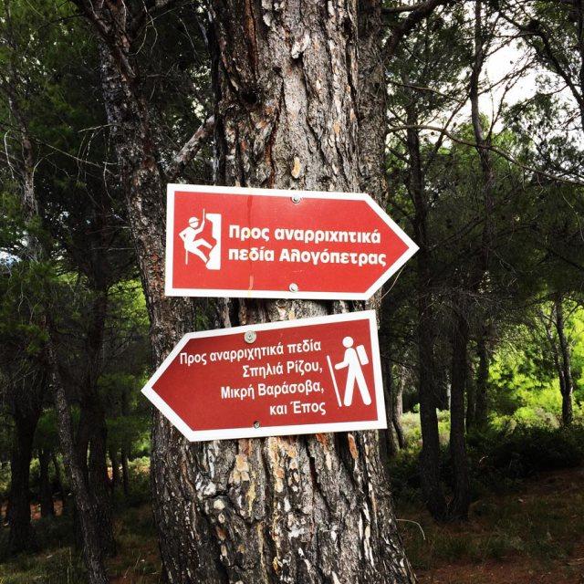 Climbing_Fyli_Pano_Alogopetra_2743