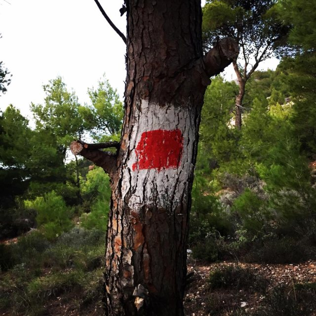 Climbing_Fyli_Pano_Alogopetra_2747