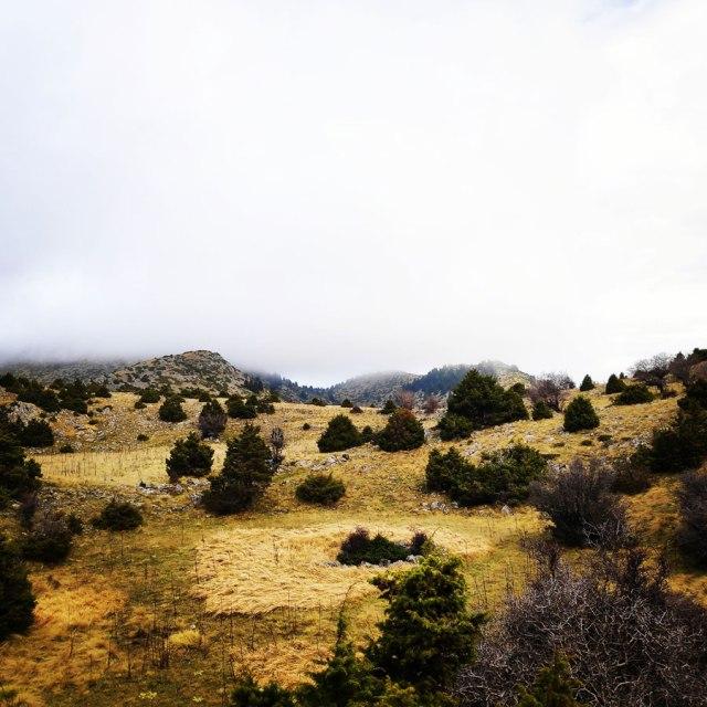 Mainalo_Menalo_Mountain_Ostrakina-Mavri_Koryfi_Travere_20181125_201358_430