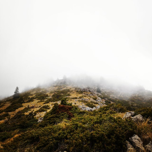 Mainalo_Menalo_Mountain_Ostrakina-Mavri_Koryfi_Travere_20181125_202117_265