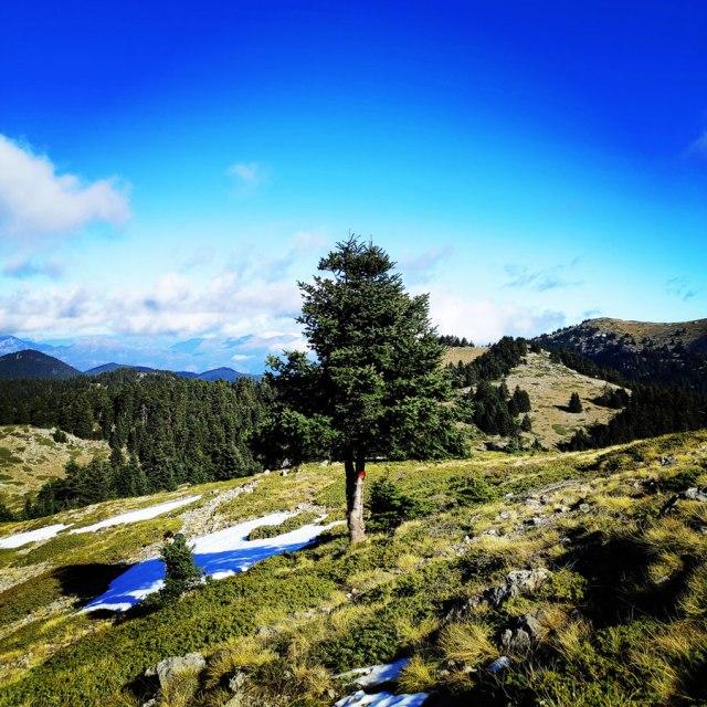 Mainalo_Menalo_Mountain_Refuge_Tzelati_20181125_185627_573