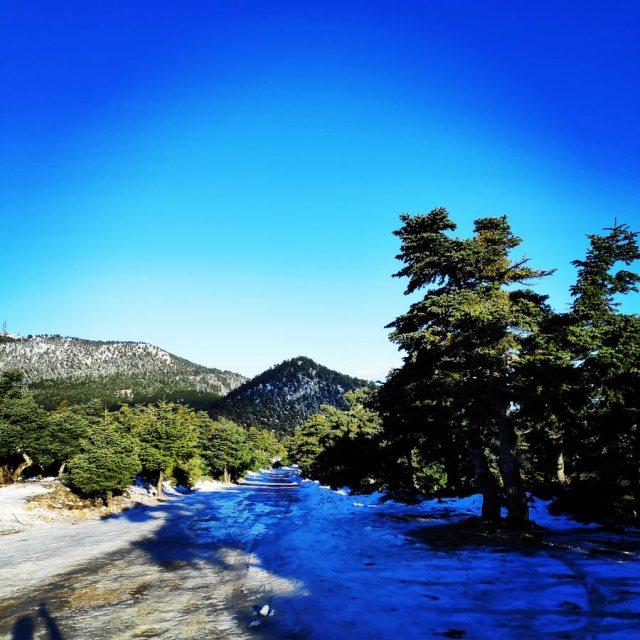 Winter_Hiking_Parnitha_20181230_103617_371