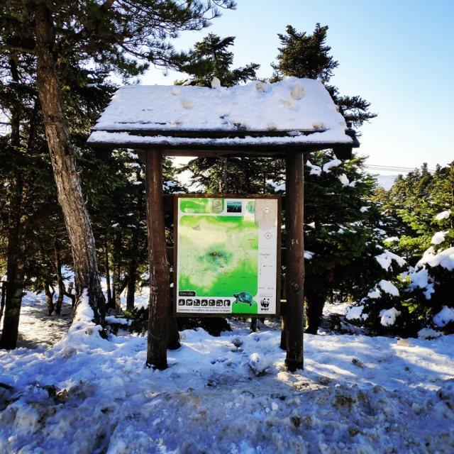 Winter_Hiking_Parnitha_20181230_103756_240