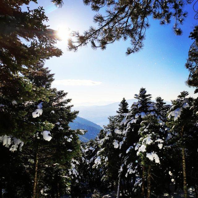 Winter_Hiking_Parnitha_20181230_103929_125