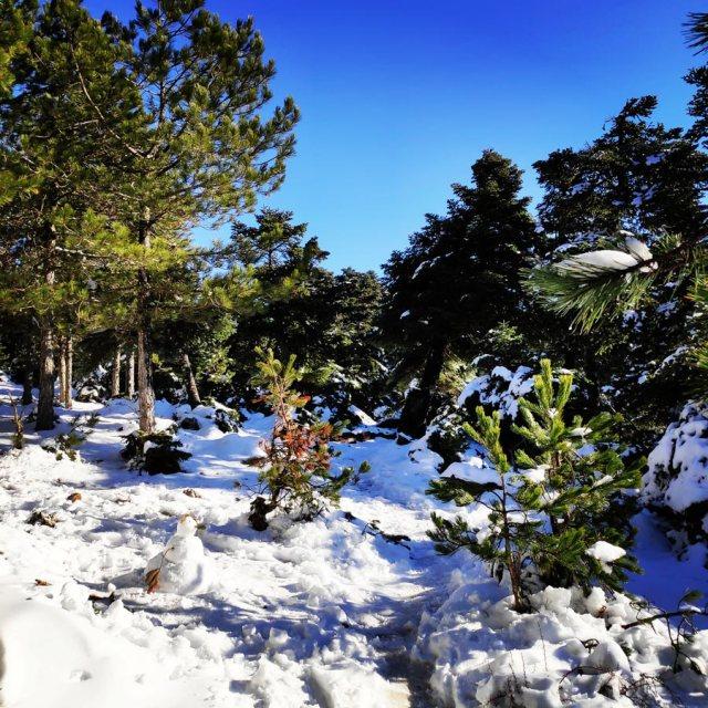 Winter_Hiking_Parnitha_20181230_104003_794