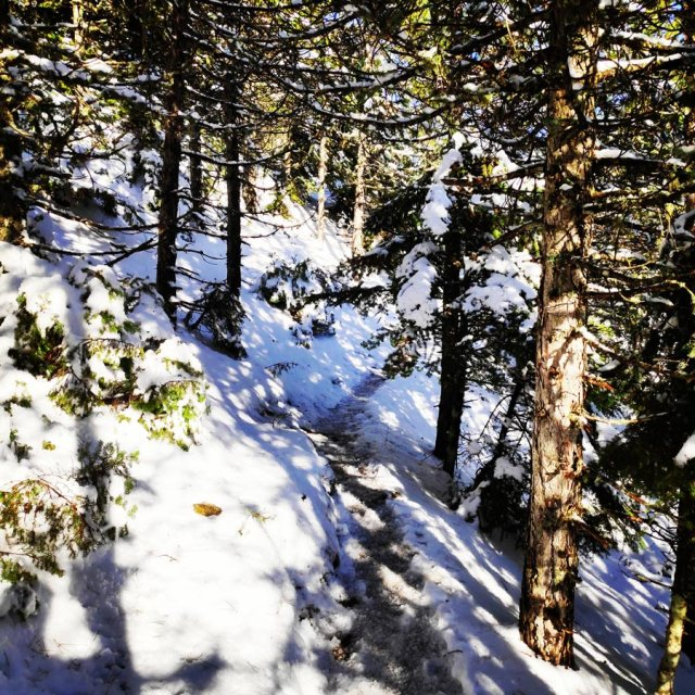 Winter_Hiking_Parnitha_20181230_104211_364
