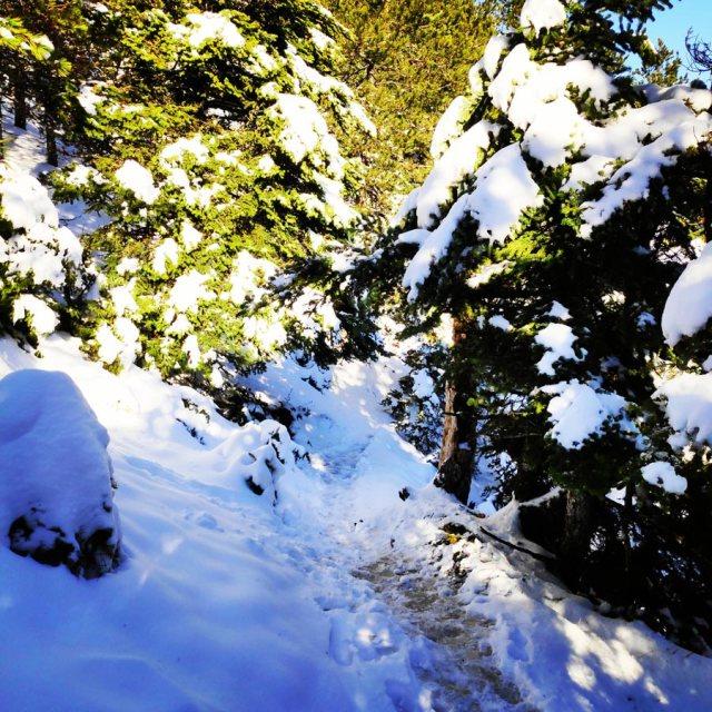 Winter_Hiking_Parnitha_20181230_104223_765