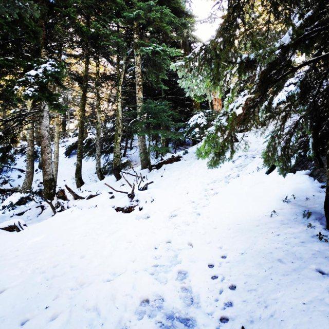 Winter_Hiking_Parnitha_20181230_104319_283