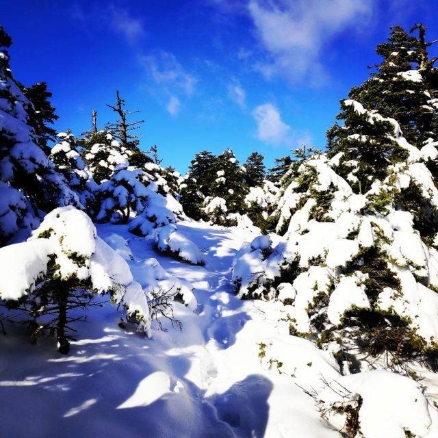 Winter_Hiking_Parnitha_20181230_104726_481