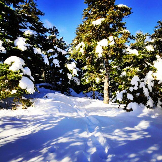 Winter_Hiking_Parnitha_20181230_104759_837