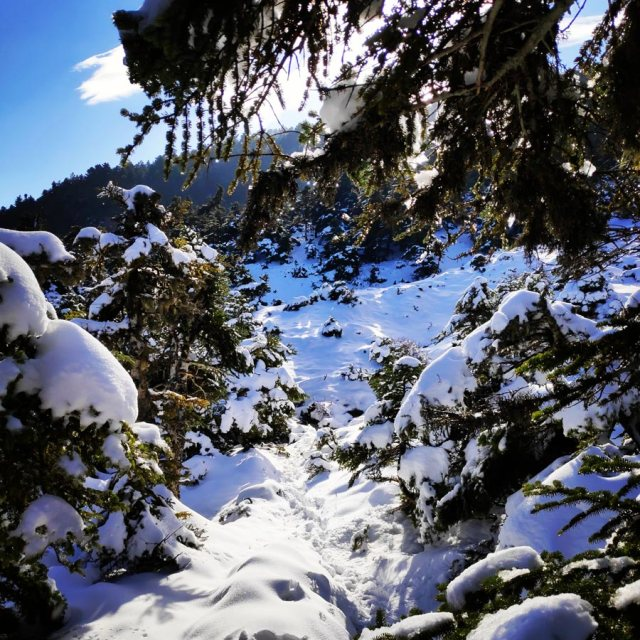 Winter_Hiking_Parnitha_20181230_104816_536