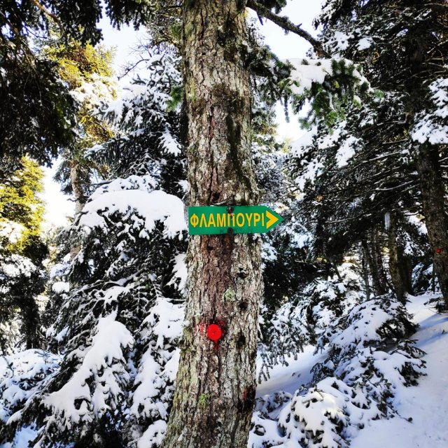 Winter_Hiking_Parnitha_20181230_105102_182