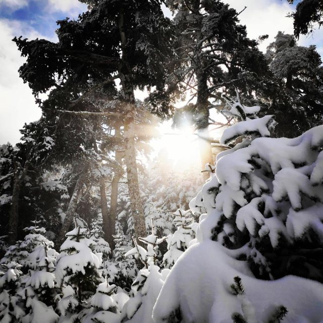 Winter_Hiking_Parnitha_20181230_105627_284