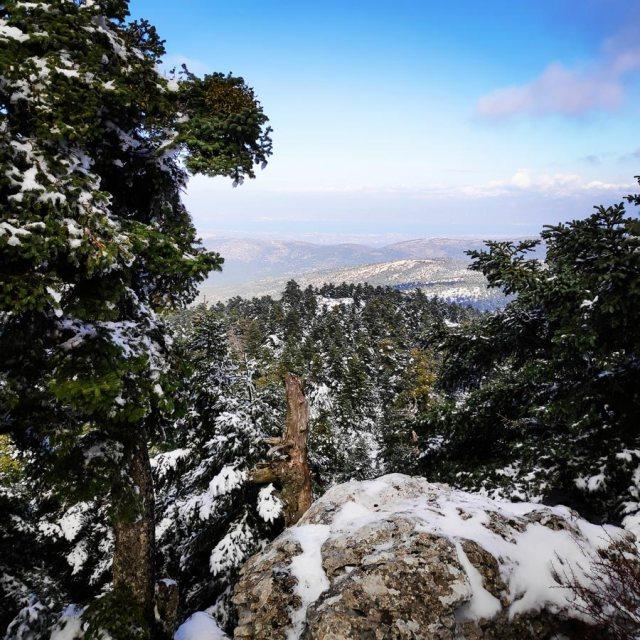 Winter_Hiking_Parnitha_20181230_105659_332