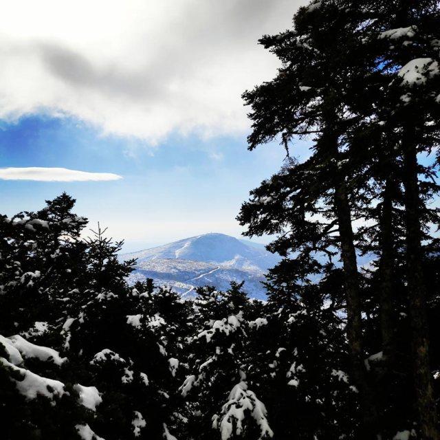 Winter_Hiking_Parnitha_20181230_105926_320
