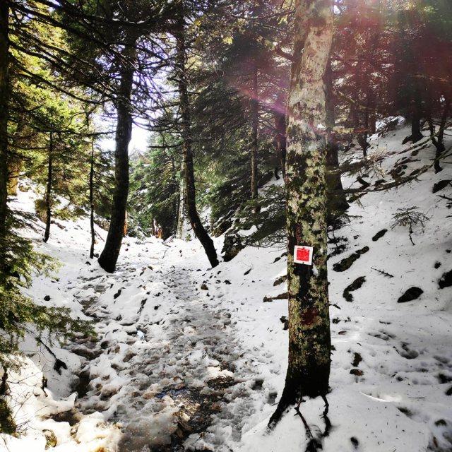Winter_Hiking_Parnitha_20181230_110102_224