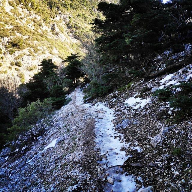 Winter_Hiking_Parnitha_20181230_110243_977