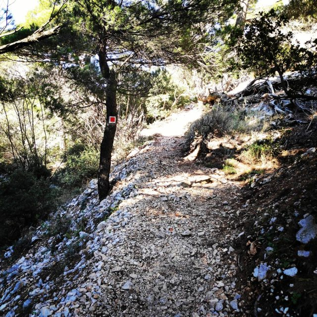 Winter_Hiking_Parnitha_20181230_110342_365