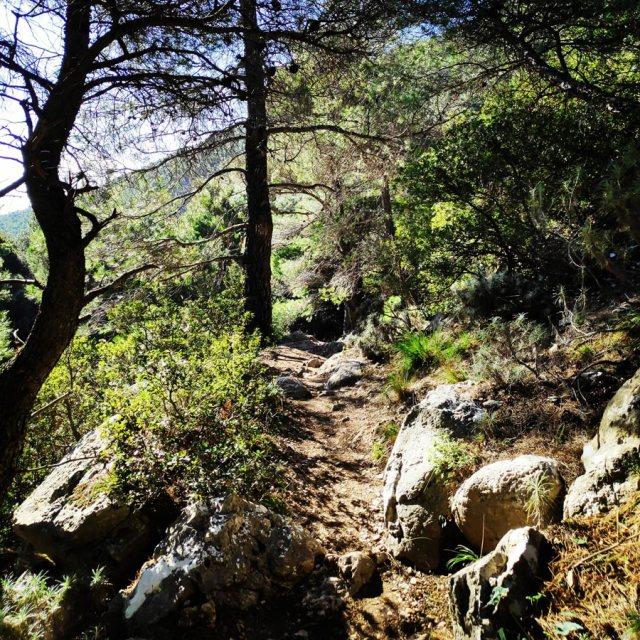 Winter_Hiking_Parnitha_20181230_110418_666