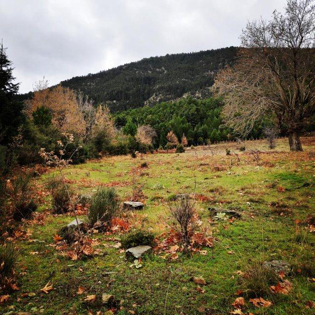Gardiki-Zarouchla-Aroania-Arete-Helmos_20181210_071251_126