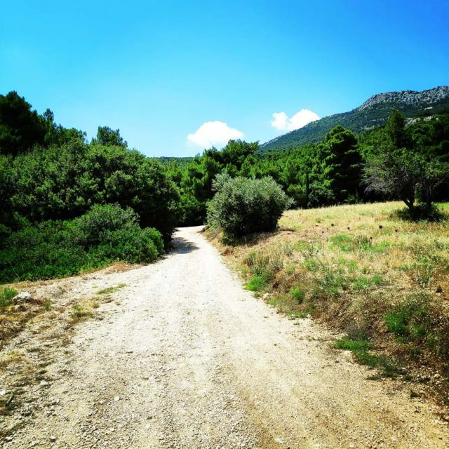 Climbing_Korakofolia_Parnitha__080423_953