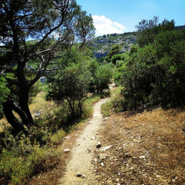 Climbing_Korakofolia_Parnitha__080526_513