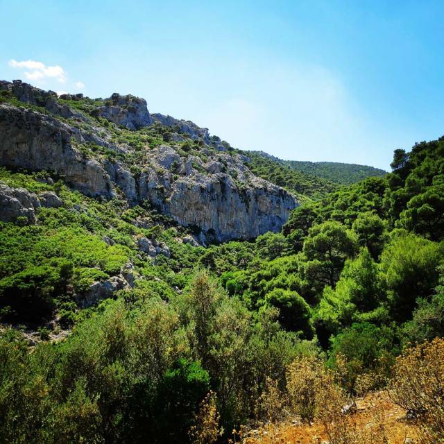 Climbing_Korakofolia_Parnitha__080605_681