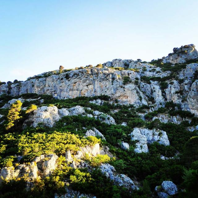 Climbing_Korakofolia_Parnitha__080638_957