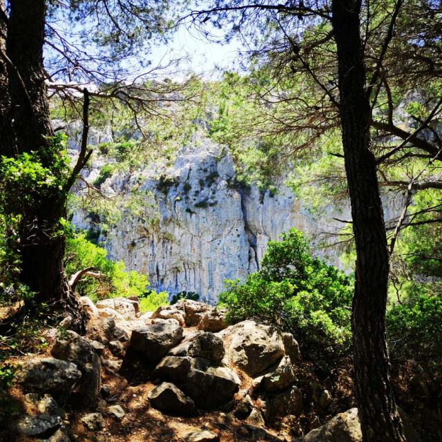 Climbing_Korakofolia_Parnitha__080757_756