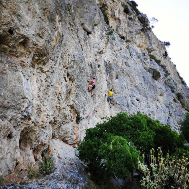 Climbing_Korakofolia_Parnitha__082331_769