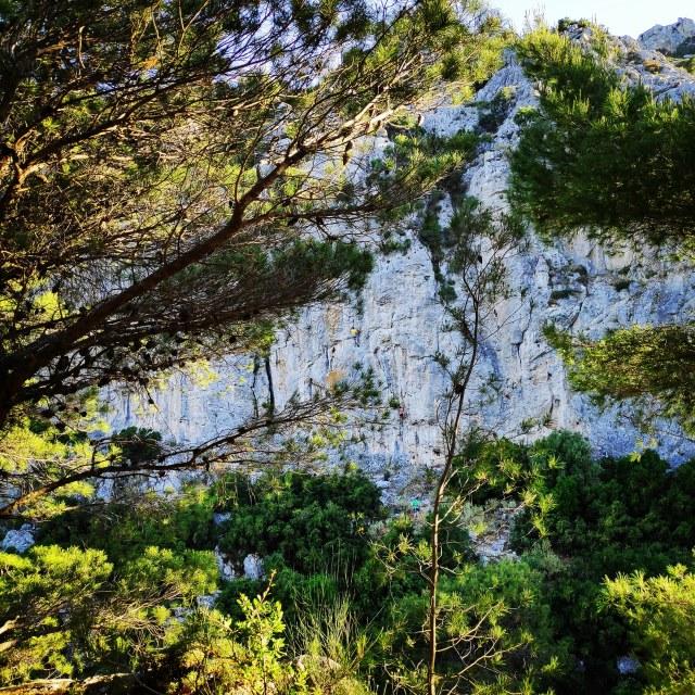 Climbing_Korakofolia_Parnitha__082541_396