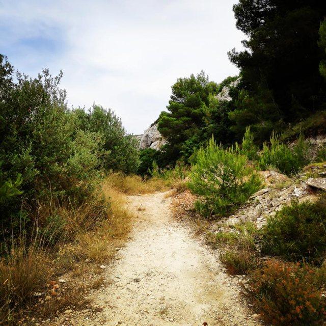 Climbing_Acharnis_Parnitha20190619_222027_478