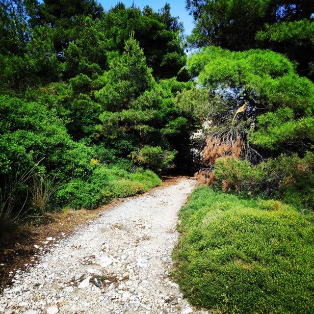 Climbing_Sibligades_Penteli_Athens_125809_892
