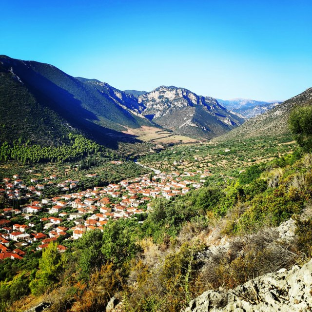 Climbing_Leonidio_Mignonette_071724_528