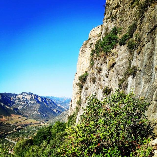 Climbing_Leonidio_Mignonette_071815_914