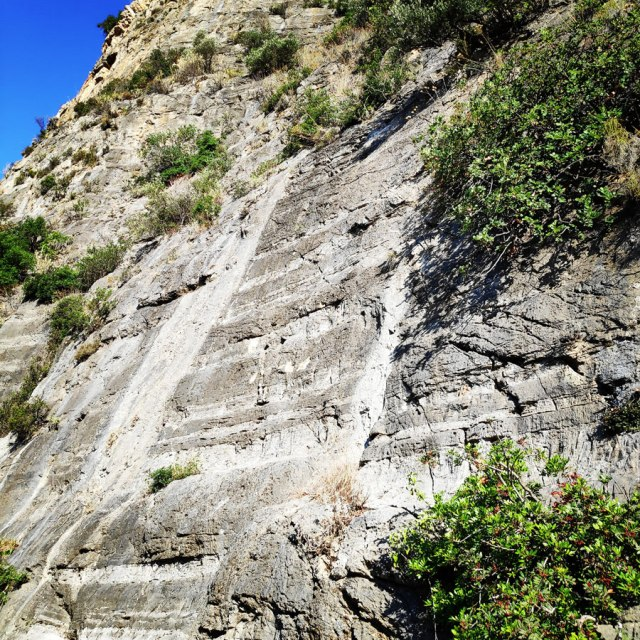 Climbing_Leonidio_Mignonette_072145_655