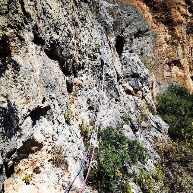 Climbing_Leonidio_Mignonette_072206_520