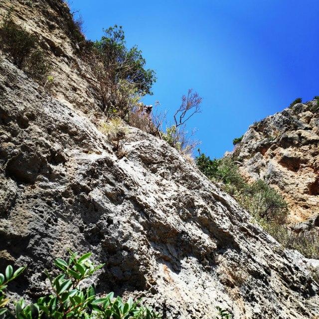 Climbing_Leonidio_Mignonette_072402_485