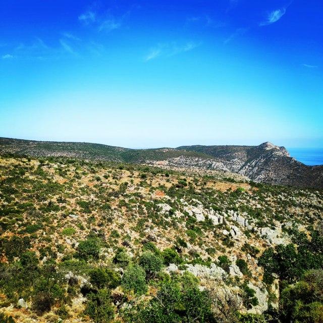 Climbing_Leonidio_Mignonette_072539_634