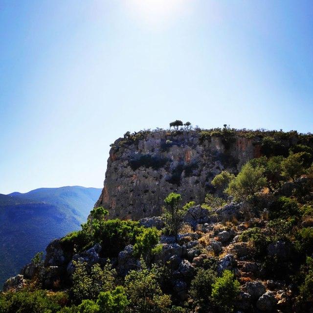 Climbing_Leonidio_Mignonette_072602_637