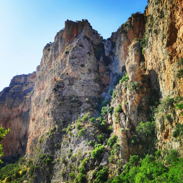 Climbing_Leonidio_Mignonette_072828_155