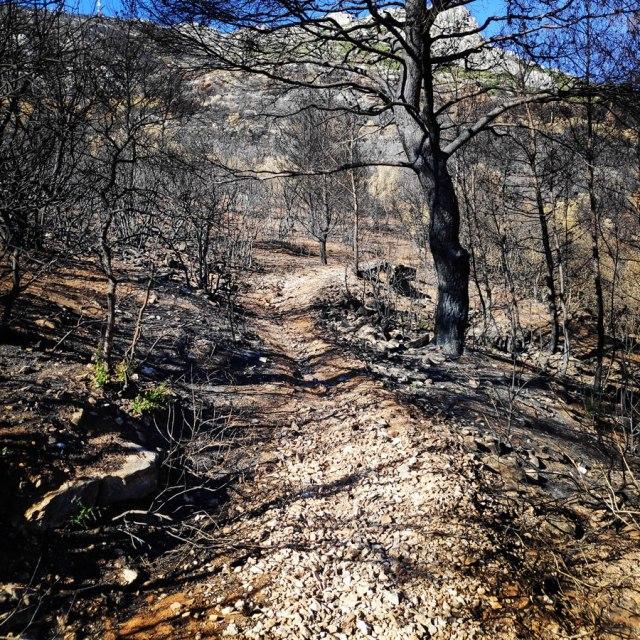 Hymettus_West_Ridge_Prosilio_Trad_Climbing_151759_074