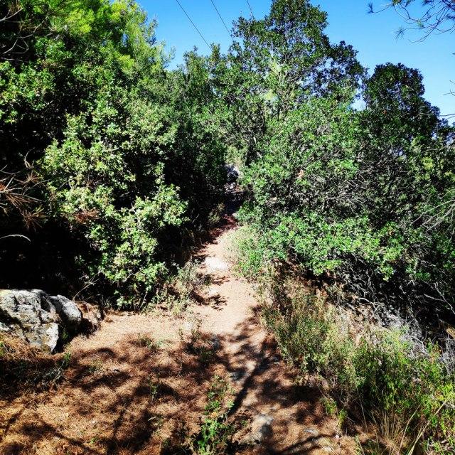 Hymettus_West_Ridge_Prosilio_Trad_Climbing_153628_428